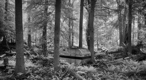 1749-1764.Forest.Camper.FINV2